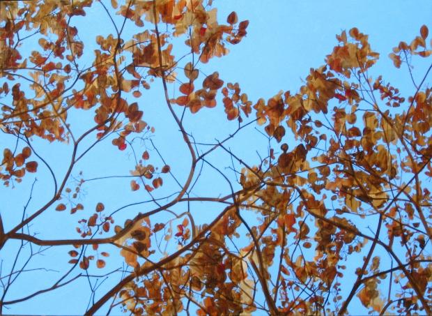 amani-tree_psalm-8
