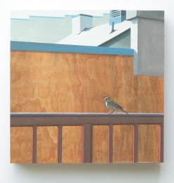 mark-11_1-12_12-birdinfrontofabrickwall