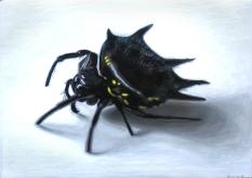 spiky-spider