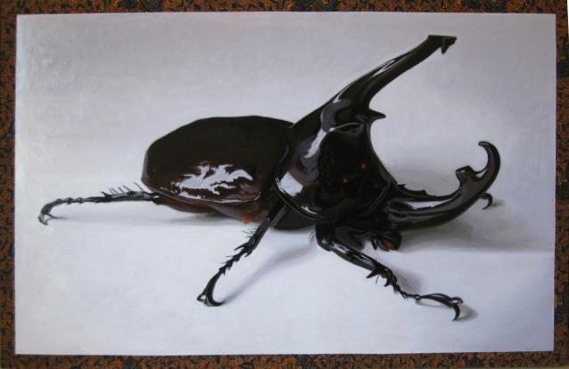 vader-beetle